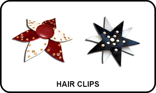 Hair_Clips_Small_Pic